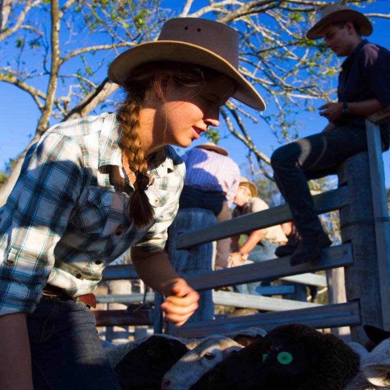 Training Boerderijwerk Australie